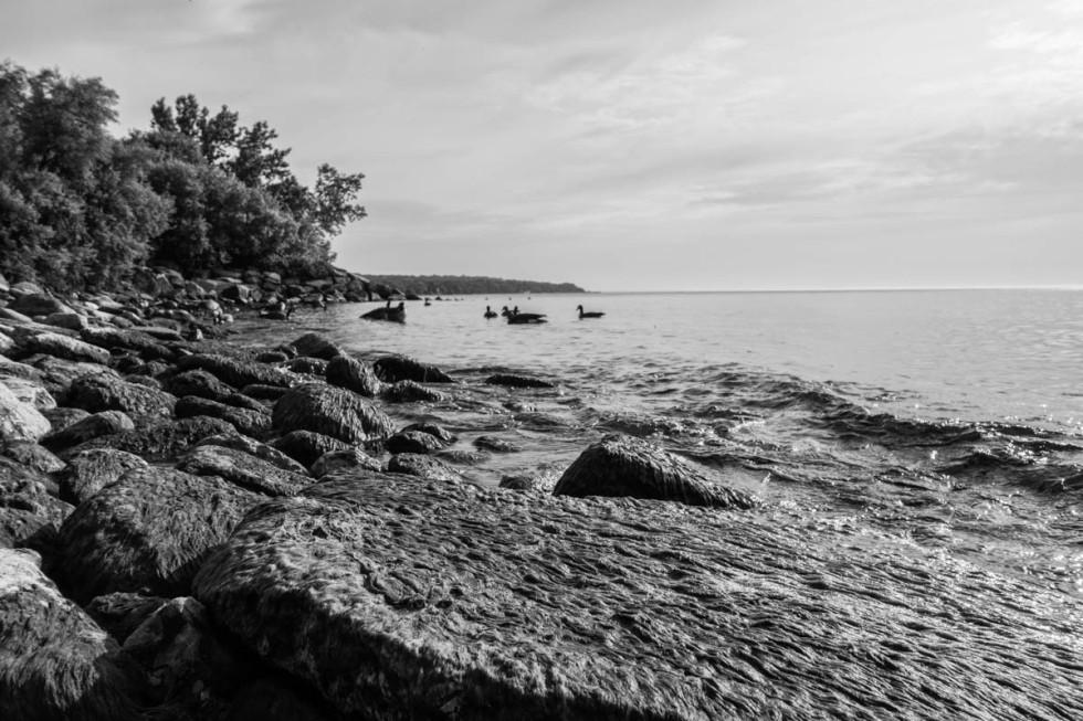 Ashbridges Bay