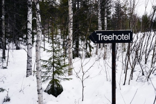 It's exactly what it describes. Hotels suspended in the trees!